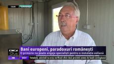 PARADOX ROMANESC OK