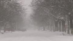 iarna zapada ninsoare vant