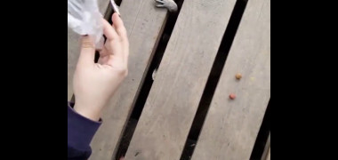 LOL! Video-ul ăsta cu RATONI ZOMBIE face ravagii pe net