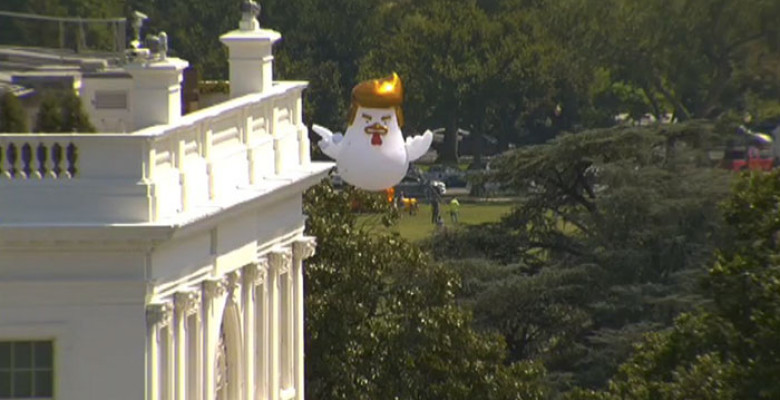 donald-trump-giant-inflatable-chicken-white-house-9-598bfef6c0c4a__700