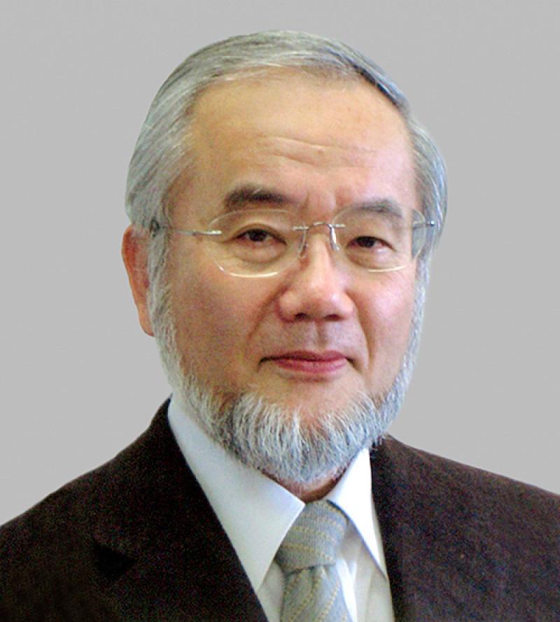 Yoshinori Ohsumi-Portrait