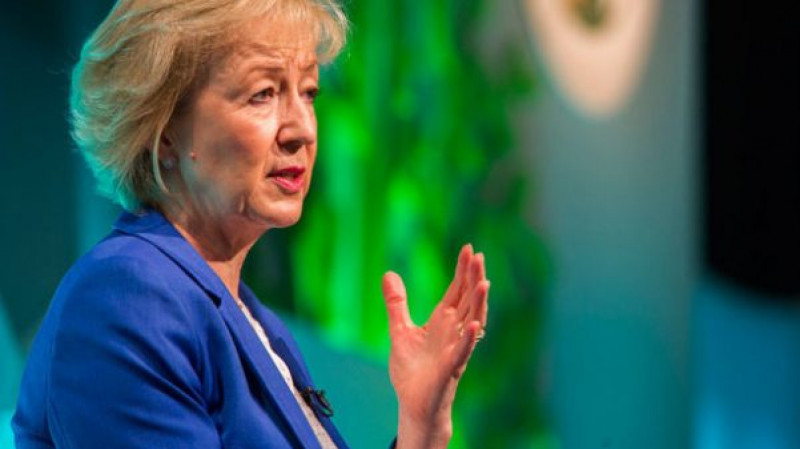 Andrea-Leadsom-OFC17-c-BillyPix-615x346-e1483607244279
