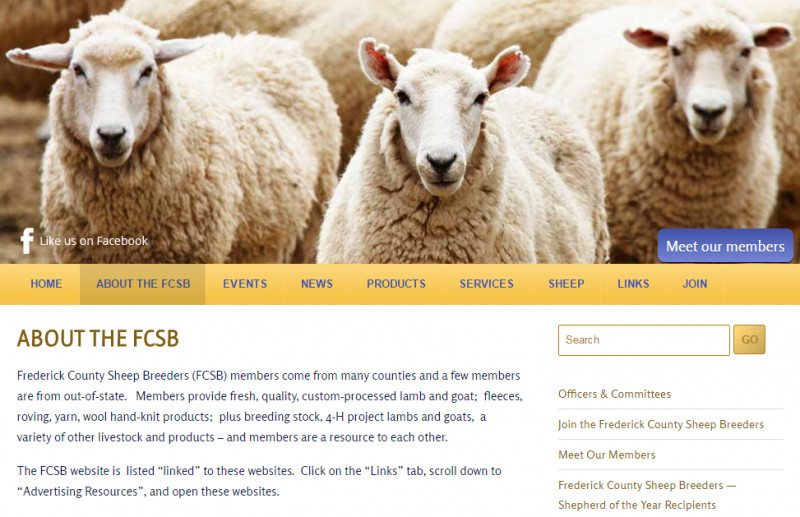 fcsb site
