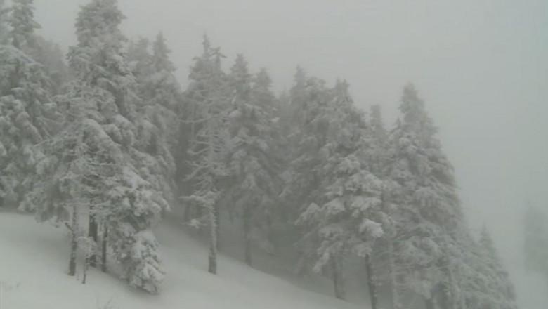 iarna ninsoare munte