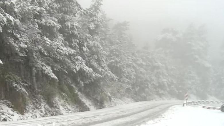 zapada iarna ninsoare