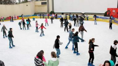 patinoar clubul elevilor