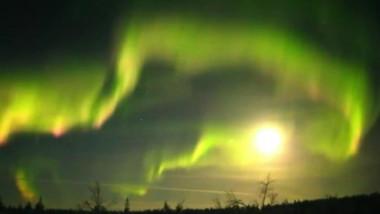 aurora boreala crop