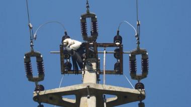 barza electrocutata