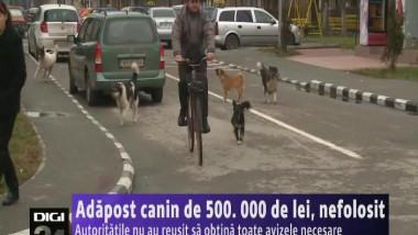 300115 adapost canin