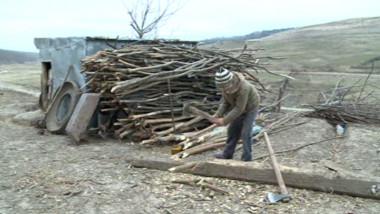 copil sparge lemne