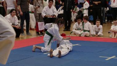 karate copi
