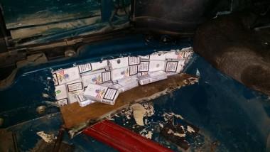 tigari confiscate15