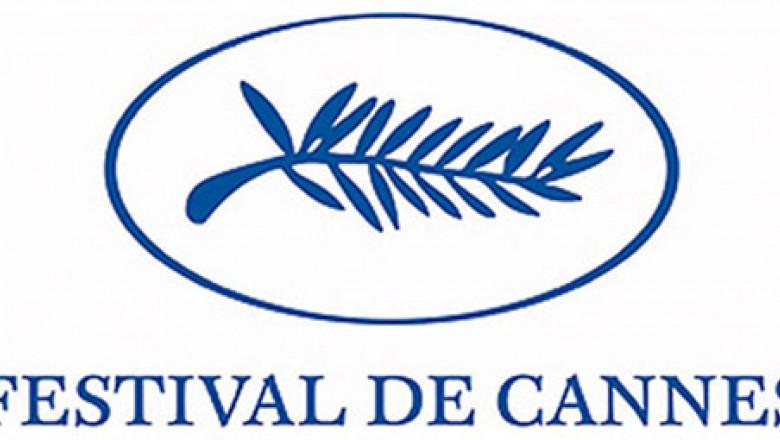 z cannes festival logo