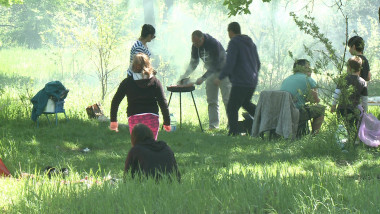 picnic gratar