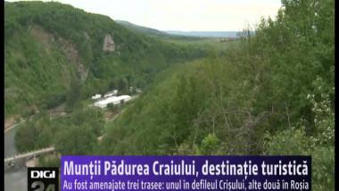 muntii padurea craiului 120515