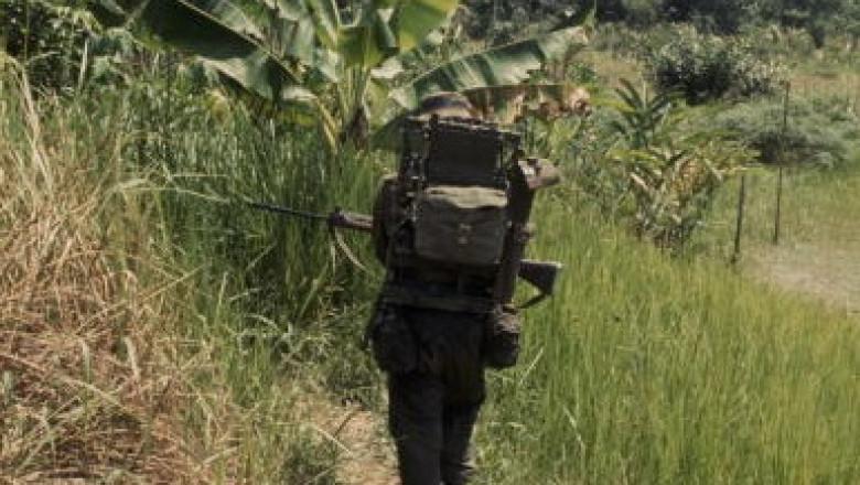 jungla malaezia getty