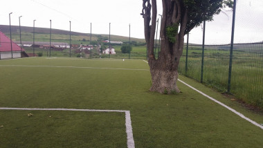 teren fotbal copac 4