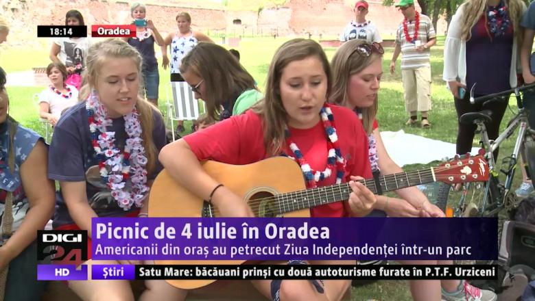 picnic american 060715