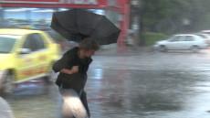 vant umbrela