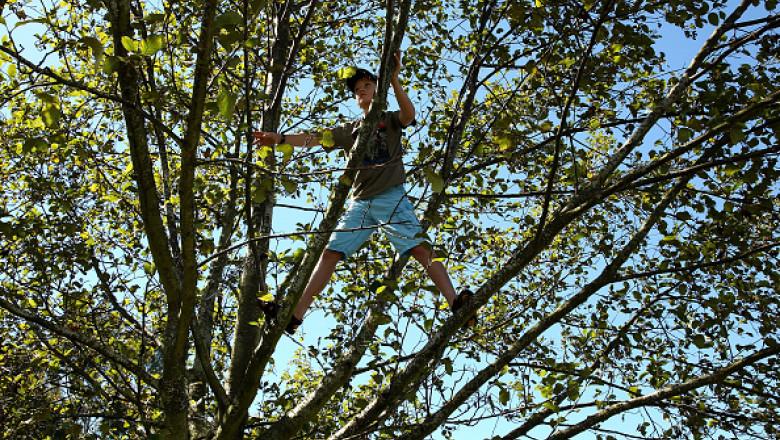 copil in copac getty
