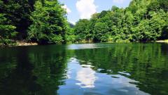 coada lacului facebook