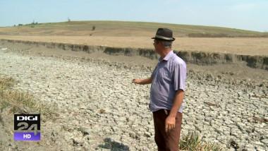 România se usucă. Un sfert din culturile agricole sunt compromise de secetă