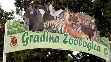 gradina zoo deschidere