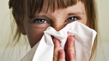 alergii-web