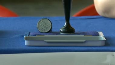 stampila de vot europarlamentare 2014