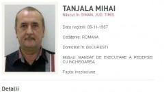 mihai-tanjala-465x390