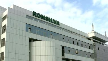 romsilva1