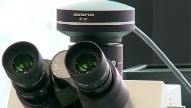 microscop olympus