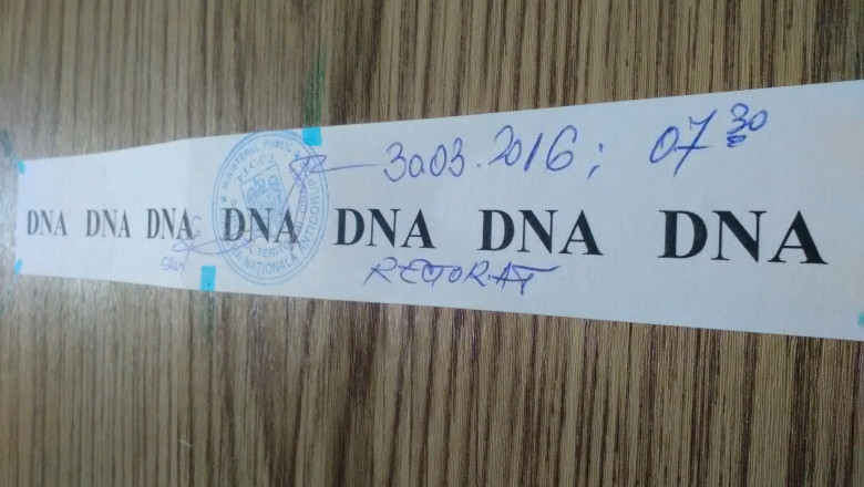 Universitate descinderi DNA2