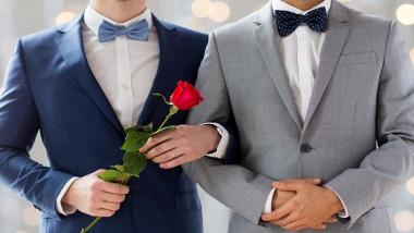 casatorie gay 2
