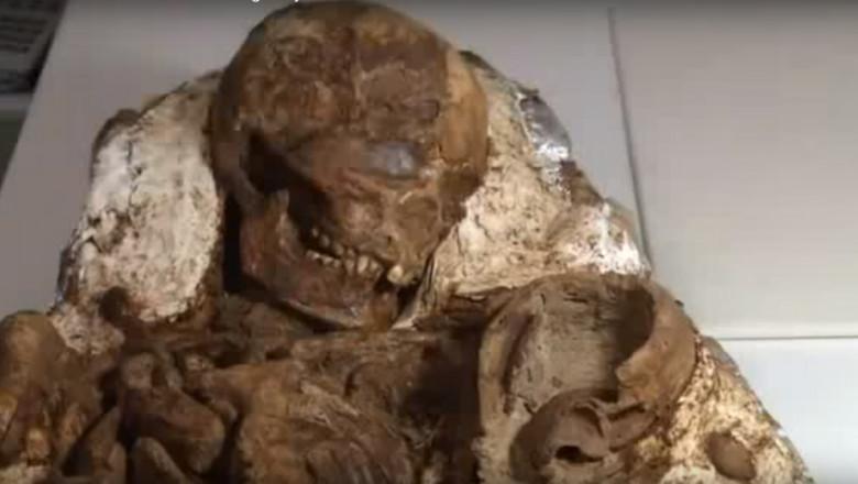 fosila de 4800 ani taiwan