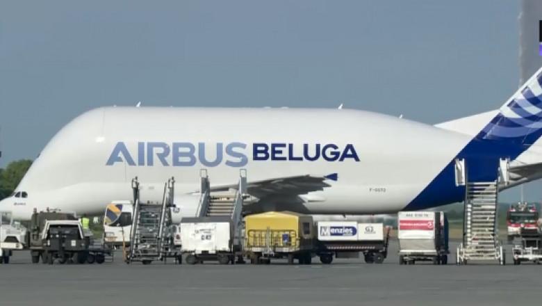 beluga avion