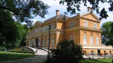 Castelul Regal de la Savarsin3- wiki