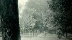 parc cluj s
