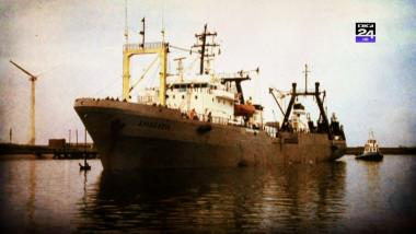 flota digi 4