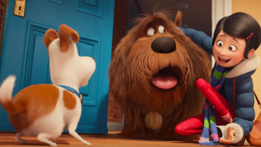 duke secret life of pets 1