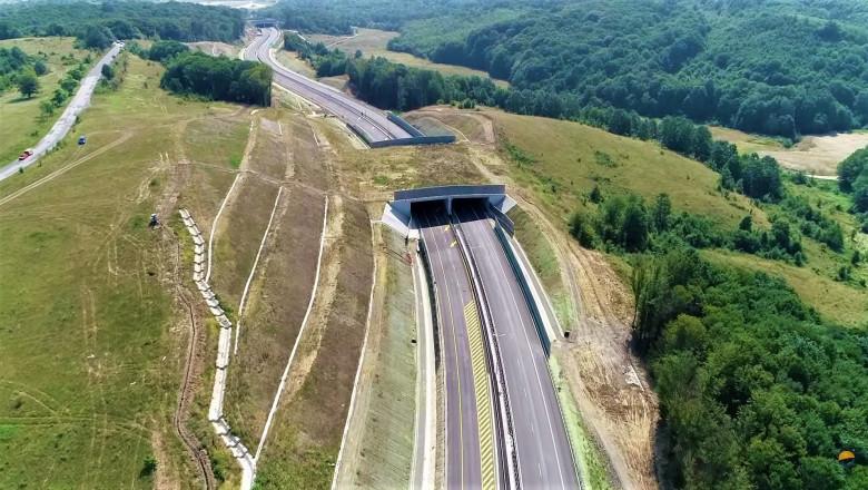 autostrada-lugoj-deva-pro-infrastructura (2)