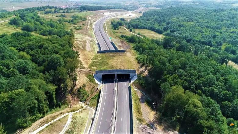 Ecoduct pentru traversarea animalelor construit deasupra Autostrăzii Lugoj-Deva.