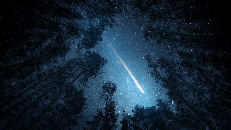 Beautiful night sky, the Milky Way, meteor and the trees. Elements of this image furnished by NASA.