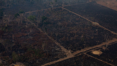 Record Number Of Fires Torch Brazil's Amazon Forest