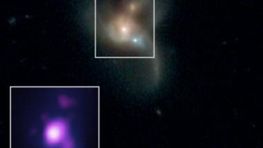 gauri negre space