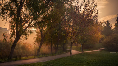 parc toamna pomi ceata bucuresti vreme frig meteo anm