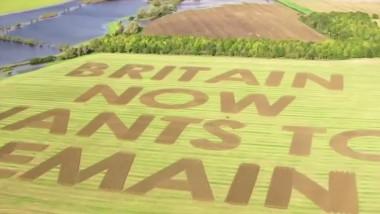 brexit-mesaj-scris-pe-un-camp-din-anglia
