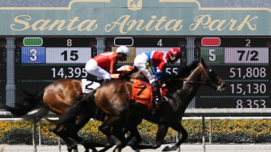 Racing Season Ends At Santa Anita After 30th Horse Dies