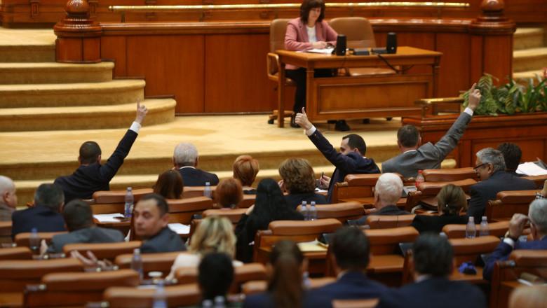 vot-coduri-penale-parlament-inquamphotos-george-calin (4)