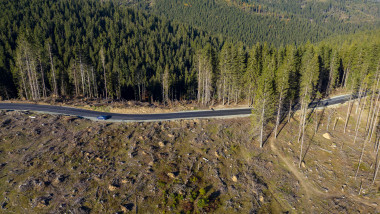Deforestation aerial photo. Drone shot of destroyed forest in Romania. Global warming concept